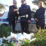 rifiuti-linea-dura