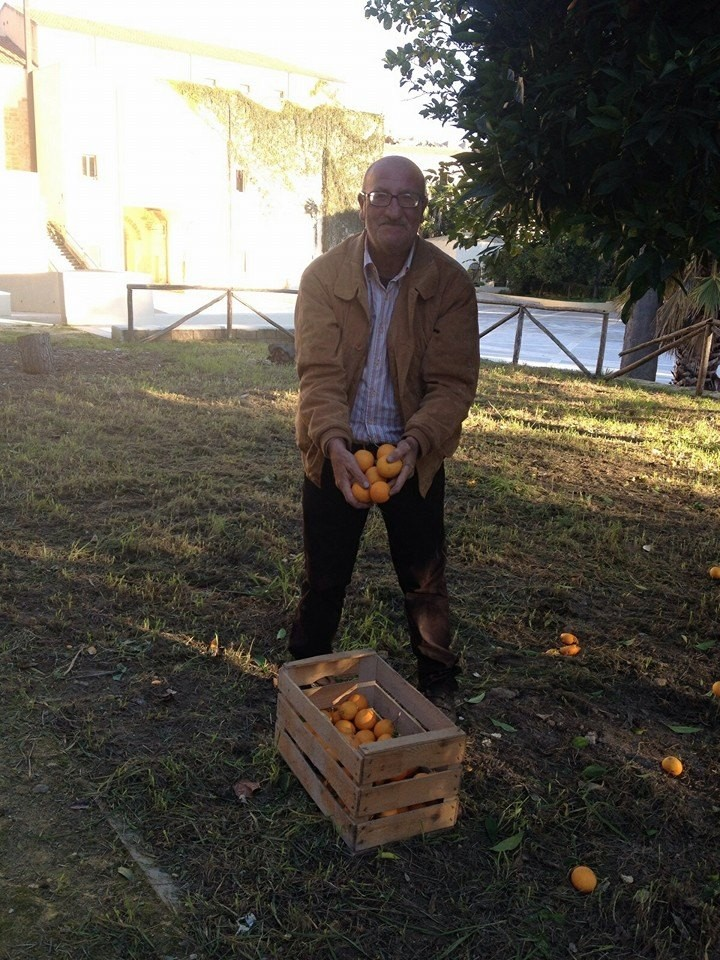 frutta gattopardo (1)